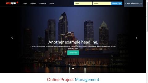 DevSpike - Online Project/Task Management